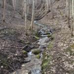 Stream – Tabasalu