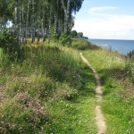 Cliff Walk – Tallinn